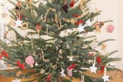 Vánoční besídka 20. 12. 2019